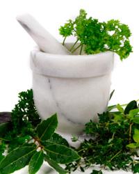Трава пол пала: лечебные свойства и способы ее применения.